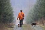 Chasseurs traqueurs scene de chasse Nr 4 2009 V de S 2